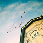 bird geometrics by Bucikah