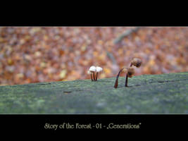 Story of the Forest - 01 by Wirikos