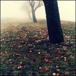 --I--- by AntekPyra