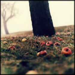 ---I-- by AntekPyra