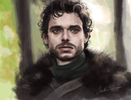 Robb Stark by ImperfectSoul
