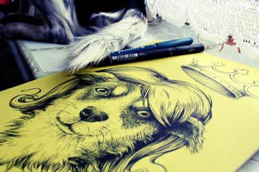 The best dog :) by anniecarter