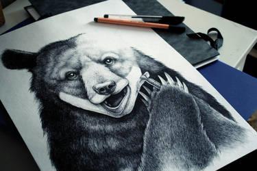 Bear without beard by anniecarter
