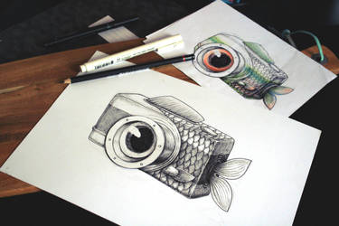 FishEye by anniecarter