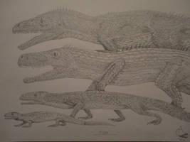 Reptile evolution by Xezansaur