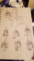 All OCs by WaterPony256