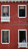 Neighbours by Suppi-lu-liuma