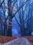 Autumn is in the air by GaiusNefarious