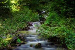 Poarta River by felinablueeyes