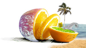 Celebrate the earth by Meropa