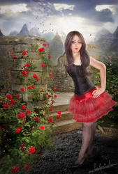 Wild roses and their thorns by Meropa