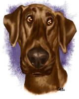Azu Pet Caricature by CharReed