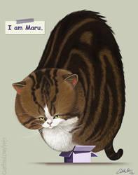 I am Maru. by CharReed
