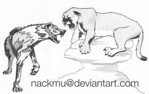 Jacob VS Edward by nackmu