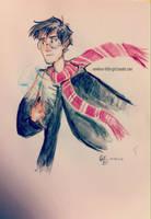 Potter by nowherelittlegirl