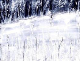 Dark, but snowy... by Vera52