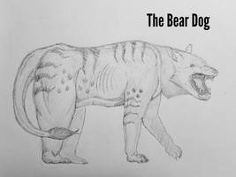 COTW#209: The Bear Dog by Trendorman