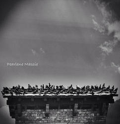 Rooftop Gathering by THEBUTTERFLYANGELS