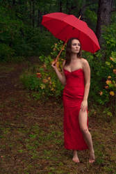Lady in Red by phydeau
