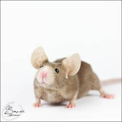Coke Of  Paradize - Fancy Mouse by BanzZaii