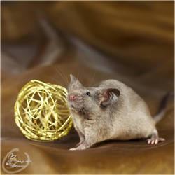 Van Raaij's Skyrim - Show Mouse by BanzZaii