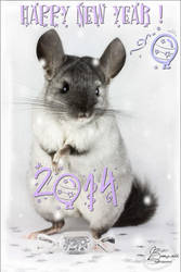 Happy New Year II by BanzZaii
