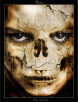 Fracture by robertadelman