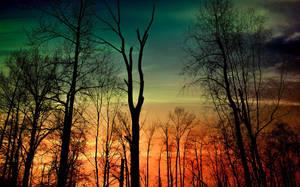 January sunset by dashakern