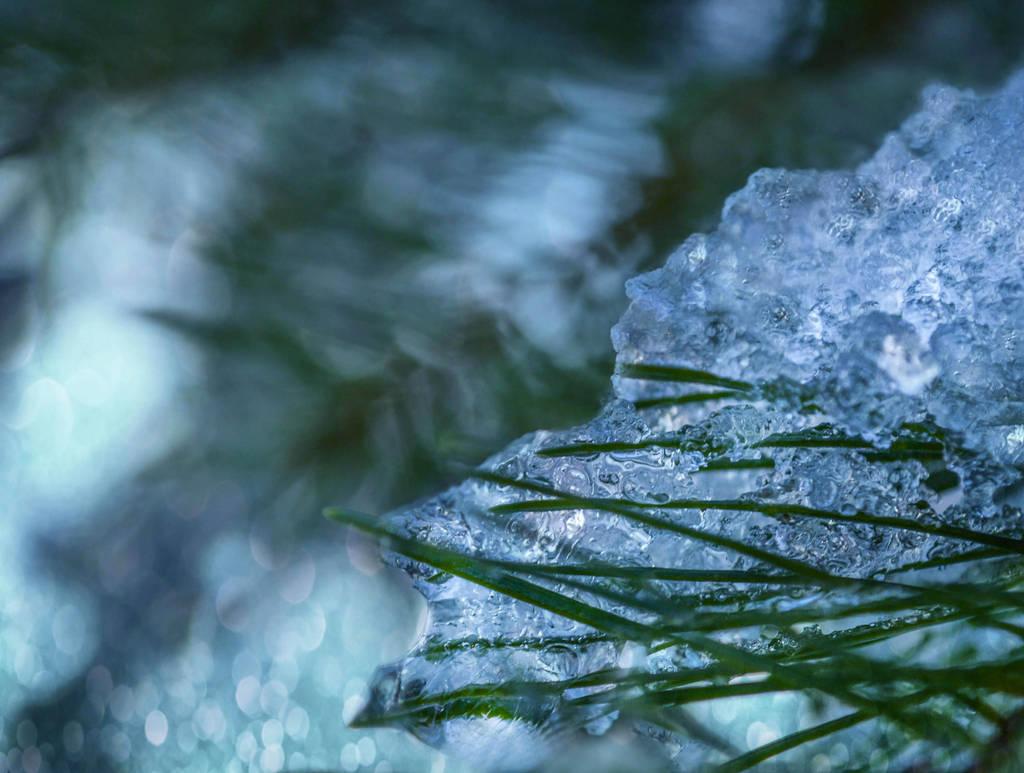 Waltz on icy piano keys by dashakern