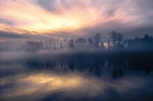 Morning Melodies by dashakern