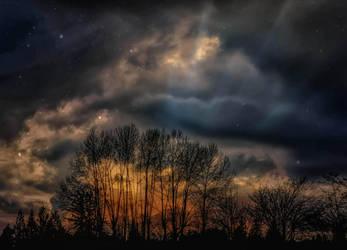 Find your star by dashakern