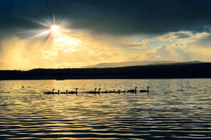 Tunkwa Lake by dashakern