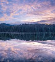 Dynamic stillness by dashakern
