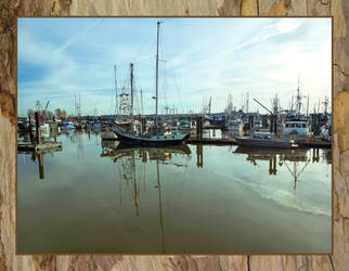 Steveston by dashakern