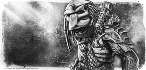 Predator by CValenzuela