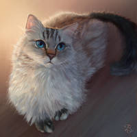 Kahlua by Blunell