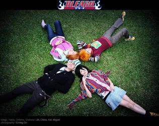 Bleach: Houki Boshi by behindinfinity