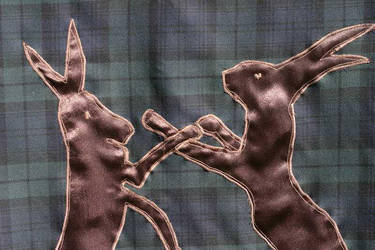 Boxing Hares Banner -2 by Bifford