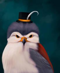 Pigmy falcon  by Great-Skua