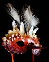 Fire Bird Mask by OakMyth
