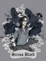 Sirius Black by Lily--Lu