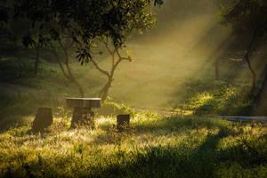 Fairy light by AlgerianStocker