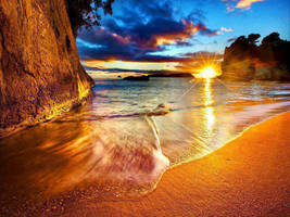 Beach Sunset by blackxman