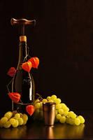 Wine 1919 by MarkScheider