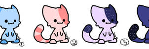 Cat adoption by MiaTV