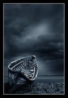dusk storm by JazzyGeo