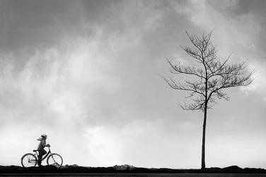 On One Misty Morning by MikkoLagerstedt