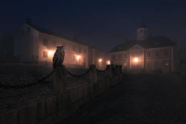 Owl by MikkoLagerstedt
