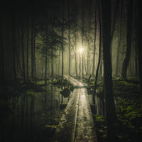 Pathway by MikkoLagerstedt