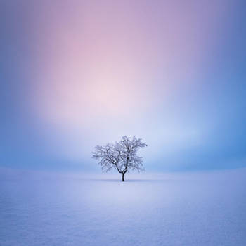 Solitude by MikkoLagerstedt